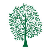 Ejemplo del vector del árbol en el fondo blanco - Foto de archivo libre de regalías