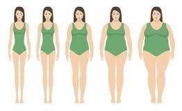 Ejemplo del vector del índice de masa corporal del peso insuficiente a extremadamente obeso Siluetas de la mujer con diversos gra libre illustration