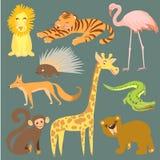 Ejemplo del vector del animal Animales lindos del parque zoológico Fotos de archivo