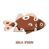 Ejemplo del vector del color de los pescados de mar Foto de archivo