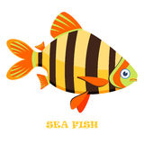 Ejemplo del vector del color de los pescados de mar stock de ilustración