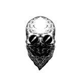 Ejemplo del vector del cráneo humano con los vidrios Fotografía de archivo libre de regalías