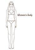 Ejemplo del vector del cuerpo del ` s de la mujer Imagen de archivo libre de regalías