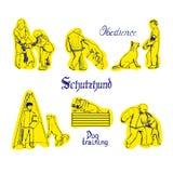 Ejemplo del vector del deporte del perro Imagenes de archivo