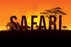 Ejemplo del vector del diseño del texto del safari Imagen de archivo