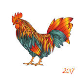 Ejemplo del vector del gallo ilustración del vector