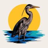 Ejemplo del vector del ganso Fotografía de archivo libre de regalías