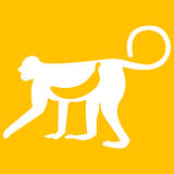 Ejemplo del vector del mono en fondo amarillo Libre Illustration