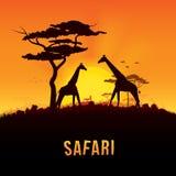 Ejemplo del vector del paisaje de África Fotografía de archivo libre de regalías