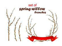 Ejemplo del vector del sauce de la primavera Fotos de archivo libres de regalías