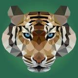 Ejemplo del vector del tigre en fondo verde Stock de ilustración