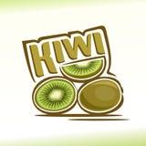 Ejemplo del vector en el tema del kiwi Foto de archivo libre de regalías