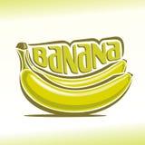 Ejemplo del vector en el tema del plátano Imagen de archivo
