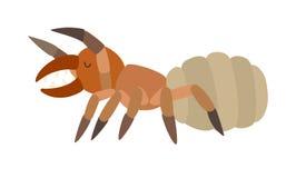Ejemplo del vector del icono de la ara?a del camello Estilo de la historieta stock de ilustración