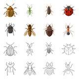 Ejemplo del vector del logotipo del insecto y de la mosca Sistema del ejemplo común del vector del insecto y del elemento stock de ilustración