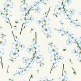 Ejemplo del vector del modelo de la rama del flor de la primavera Fotografía de archivo