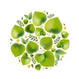 Ejemplo del vector para el tema ambiental - estilo del eco ilustración del vector