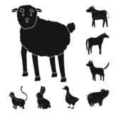Ejemplo del vector del rancho y de la muestra org?nica Colecci?n de icono del vector del rancho y de la comida para la acci?n stock de ilustración