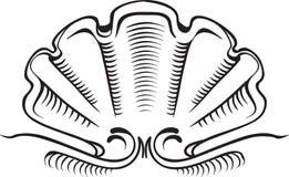 Ejemplo del vintage de la concha marina - elemen de la cresta, de la bandera o del marco Imagen de archivo