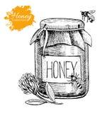 Ejemplo del vintage de la miel del vector Mano drenada libre illustration