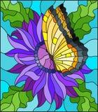 Ejemplo del vitral con una flor púrpura del aster y una mariposa amarilla brillante en un fondo azul Fotos de archivo