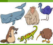 Ejemplo determinado de la historieta de los animales salvajes Fotos de archivo libres de regalías