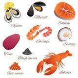 Ejemplo determinado de la langosta de la ostra del camarón de mejillón de los pescados de marisco del atún de la concha de peregr Foto de archivo libre de regalías