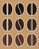 ejemplo determinado del vector de diverso de la carne asada de los granos del arabica y de café robusta icono plano del color EPS Fotos de archivo