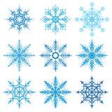 Ejemplo determinado del vector del diverso del copo de nieve invierno decorativo de las formas Imagen de archivo