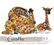 Ejemplo dibujado mano de la acuarela de la jirafa libre illustration