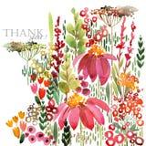 Ejemplo dibujado mano de la acuarela de las flores de los campos Tarjeta de felicitación stock de ilustración