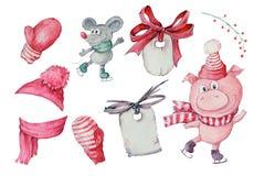 Ejemplo dibujado mano de la acuarela de los tres cerdos lindos aislados en el fondo blanco foto de archivo libre de regalías
