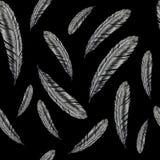 Ejemplo dibujado mano de la pluma Modelo de la pluma en fondo negro Fotografía de archivo
