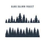 Ejemplo dibujado mano del vector del bosque del pino Fotos de archivo