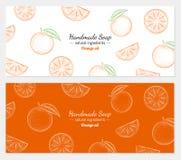 Ejemplo dibujado mano del vector de la naranja Imagenes de archivo