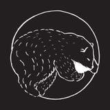Ejemplo dibujado mano del vector del estilo de la historieta con el oso polar el dormir, animal lindo Imagen de archivo