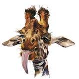 Ejemplo dibujado mano divertida de la acuarela de la jirafa libre illustration