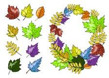 Ejemplo dibujado mano fijado del vector de las hojas de otoño Fotografía de archivo libre de regalías