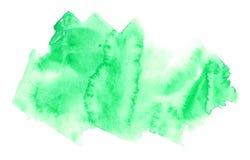 Ejemplo dibujado mano verde de la acuarela Fotografía de archivo