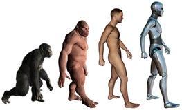 Ejemplo divertido de la evolución del hombre aislado Imagen de archivo