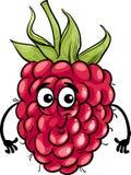 Ejemplo divertido de la historieta de la fruta de la frambuesa Fotografía de archivo libre de regalías