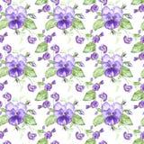 Ejemplo en acuarela de una flor del pensamiento Tarjeta floral con las flores Modelo inconsútil del ejemplo botánico Imágenes de archivo libres de regalías