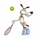 Ejemplo en un tema un perro el jugador de tenis. Fotos de archivo