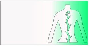 Ejemplo espinal del acorde libre illustration