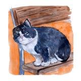 Ejemplo exhausto de la mano de la acuarela con el gato blanco y negro que se sienta en un banco en el fondo rojo de la acuarela ilustración del vector