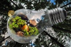 Ejemplo feliz del Día de la Tierra con el fondo del bosque Foto de archivo