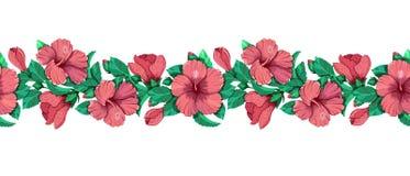 Ejemplo floral del vector de la guirnalda del hibisco stock de ilustración