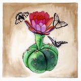 Ejemplo gráfico de un cactus de la acuarela con las mariposas stock de ilustración