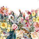 Ejemplo hermoso con los cactus viejo-diseñados Fotos de archivo libres de regalías