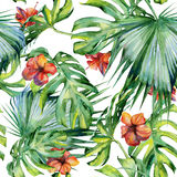 Ejemplo inconsútil de hojas tropicales, selva densa de la acuarela Imagenes de archivo
